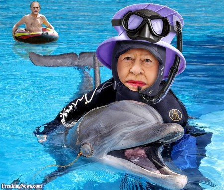 The-Queen-Swims-with-Dolphins--124550
